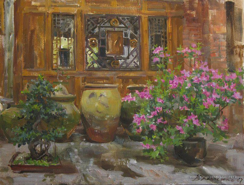 Azaleas in flower