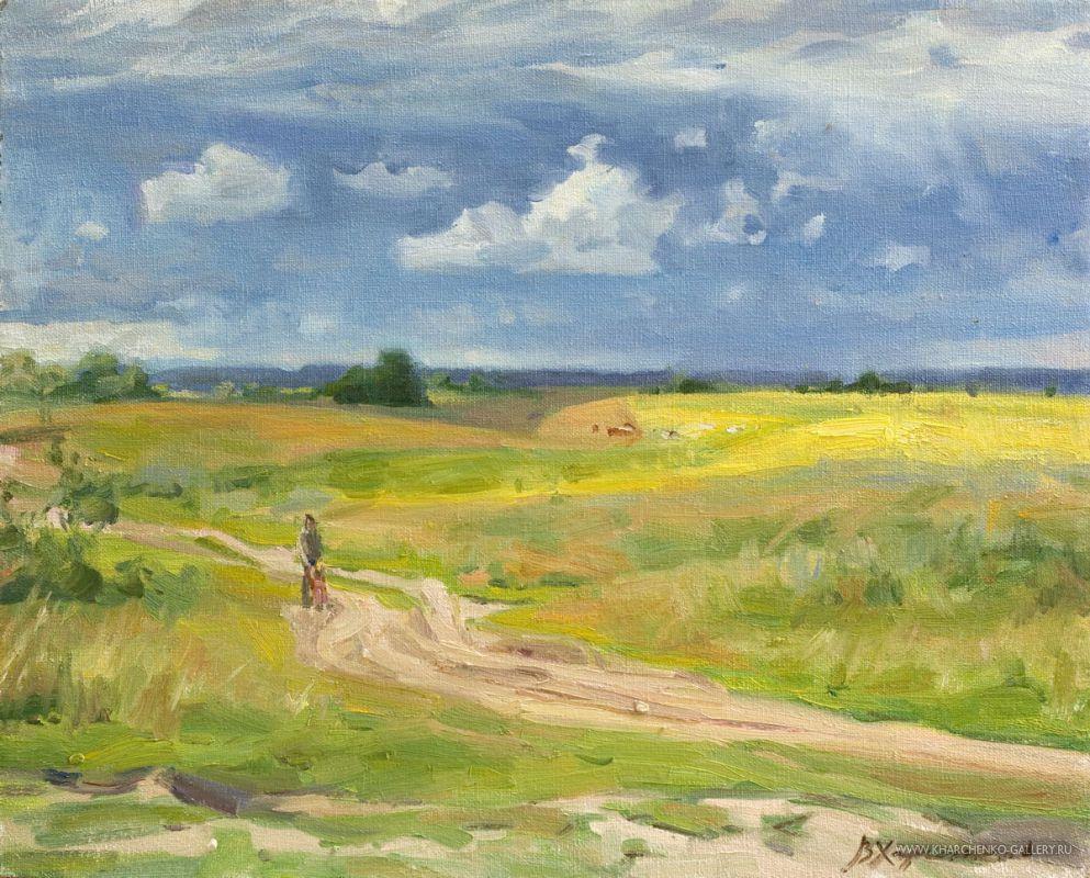 The road in fields