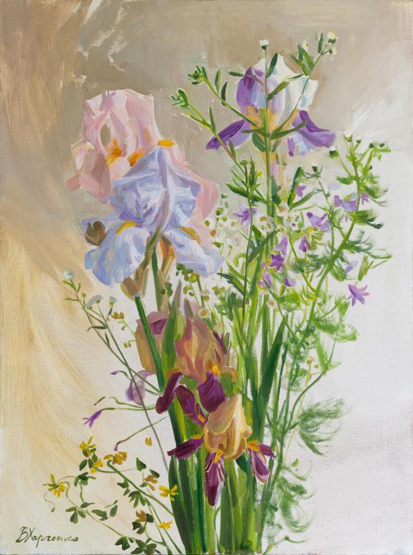 Graceful irises