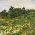 Multygrass