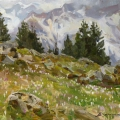 Spring on a northern slope