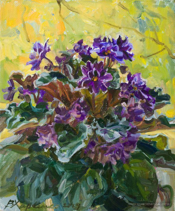 Violets autumn