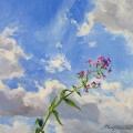 Цветок и небо