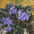 Lilac violet